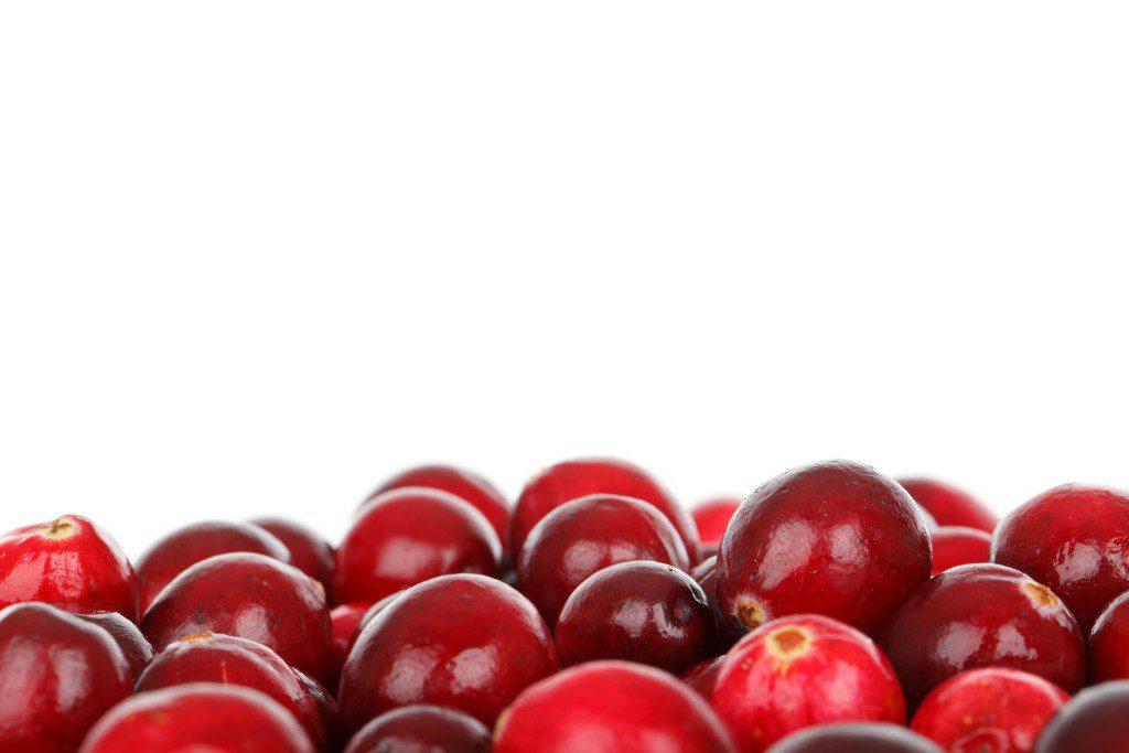cranberry recepten foto